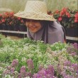 Norma Hesty Pertiwi, S. Kep., Ners